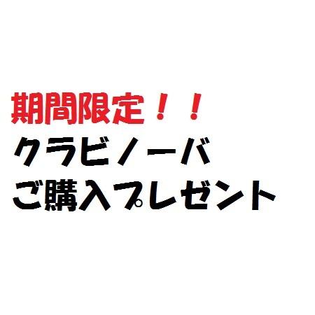 クラビノーバシリーズご購入プレゼント